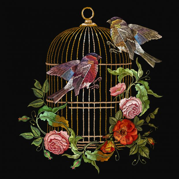 Embroidery birds and birds cage and flowers vector. Classical embroidery bullfinch and titmouse, golden cage, vintage buds of wild roses. Spring fashion art, template for design of clothes, t-shirt