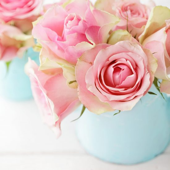 pink rose flowers in a vase. shabby chic colors